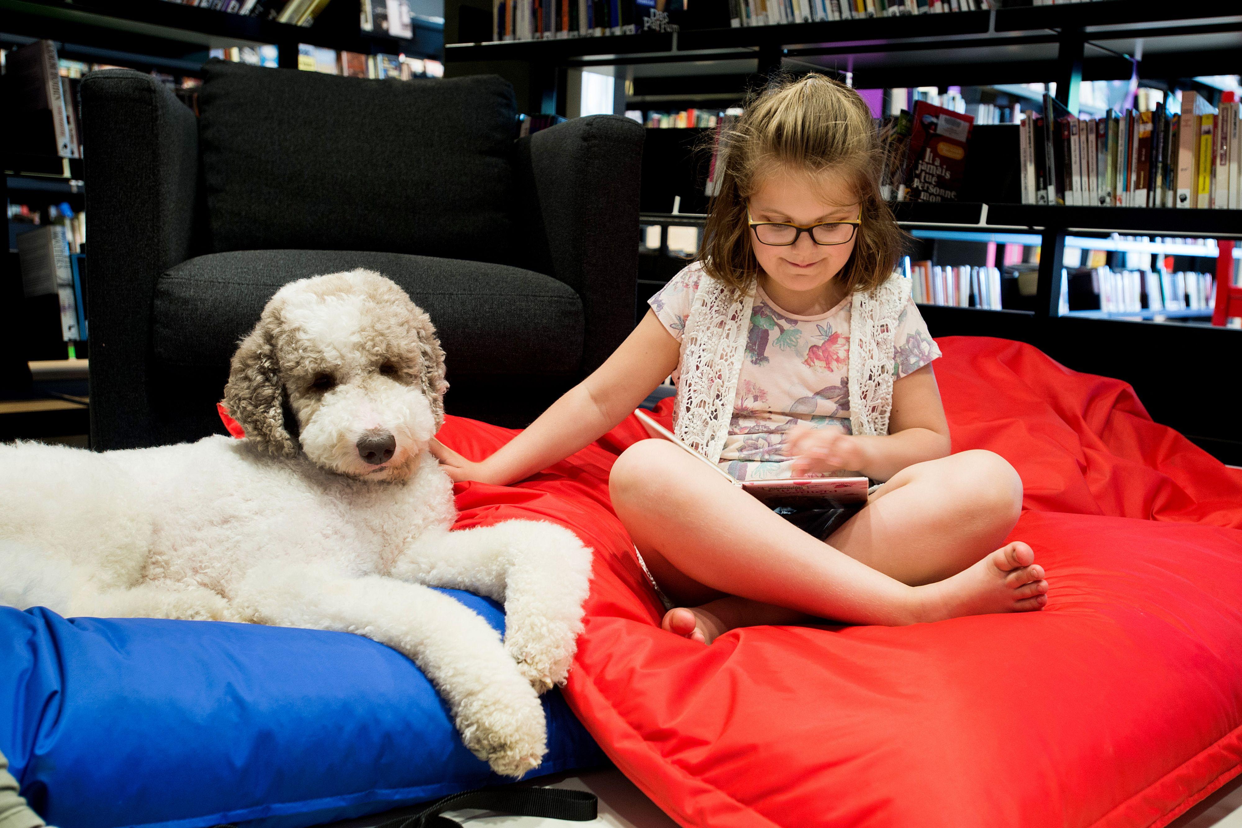 Beter lezen met hond Flex: kwispellezen is succes