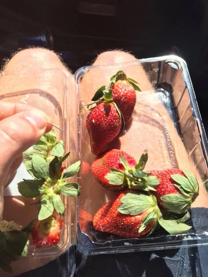 Alarm in Australië om aardbeien met naald erin