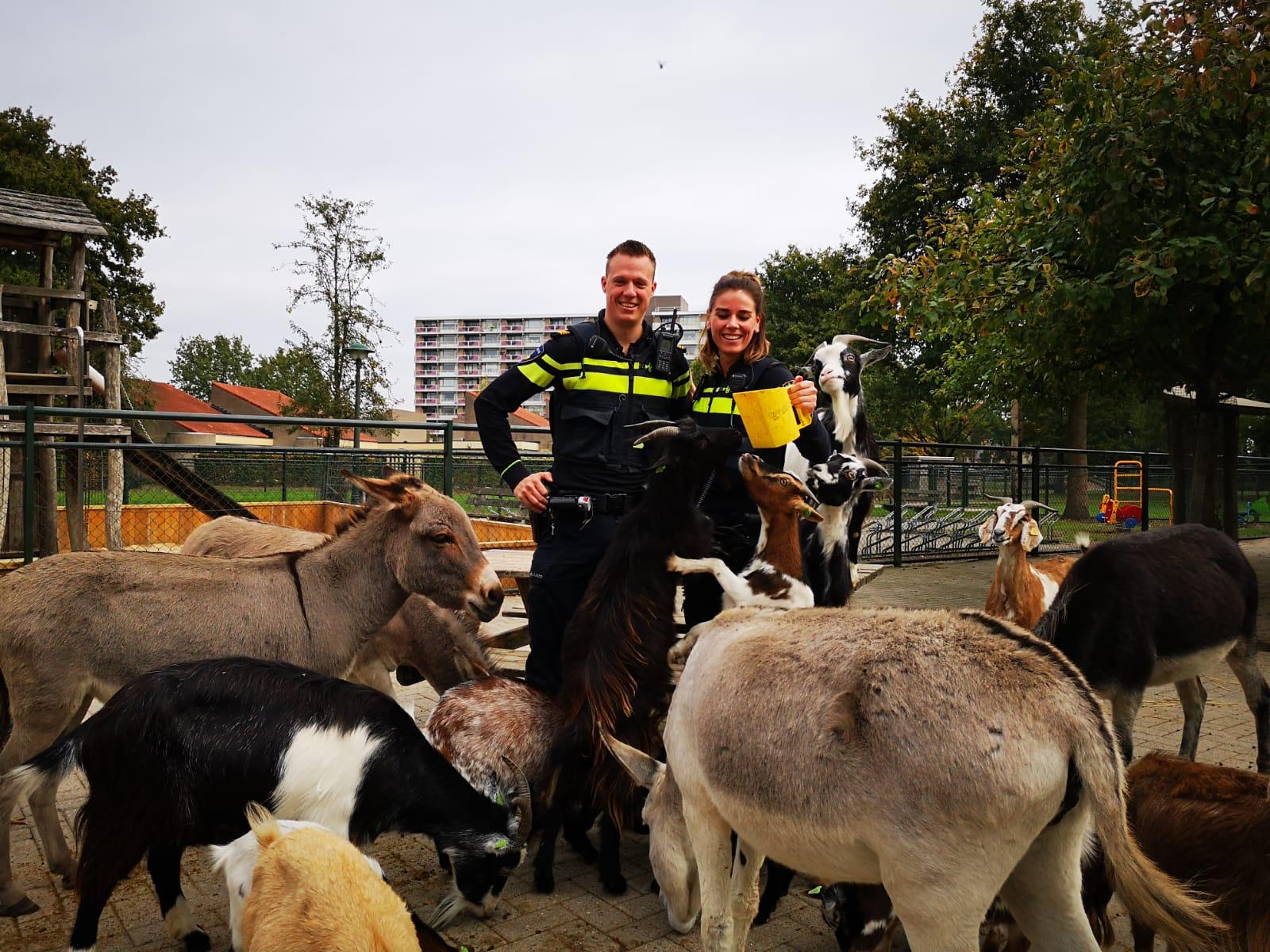 Met de dierenpolitie meekijken: 'Het is heftig werk'