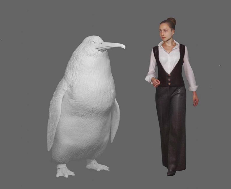 Resten van pinguïn zo groot als een mens gevonden