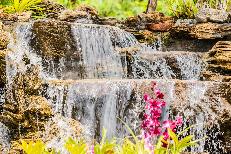 Hoe je meer sfeer in de tuin creëert: 3 tips van een hovenier