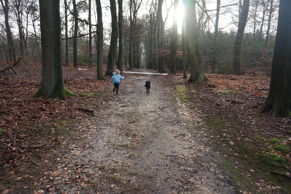 Foto van kind en hond in het bos bij een vakantiepark