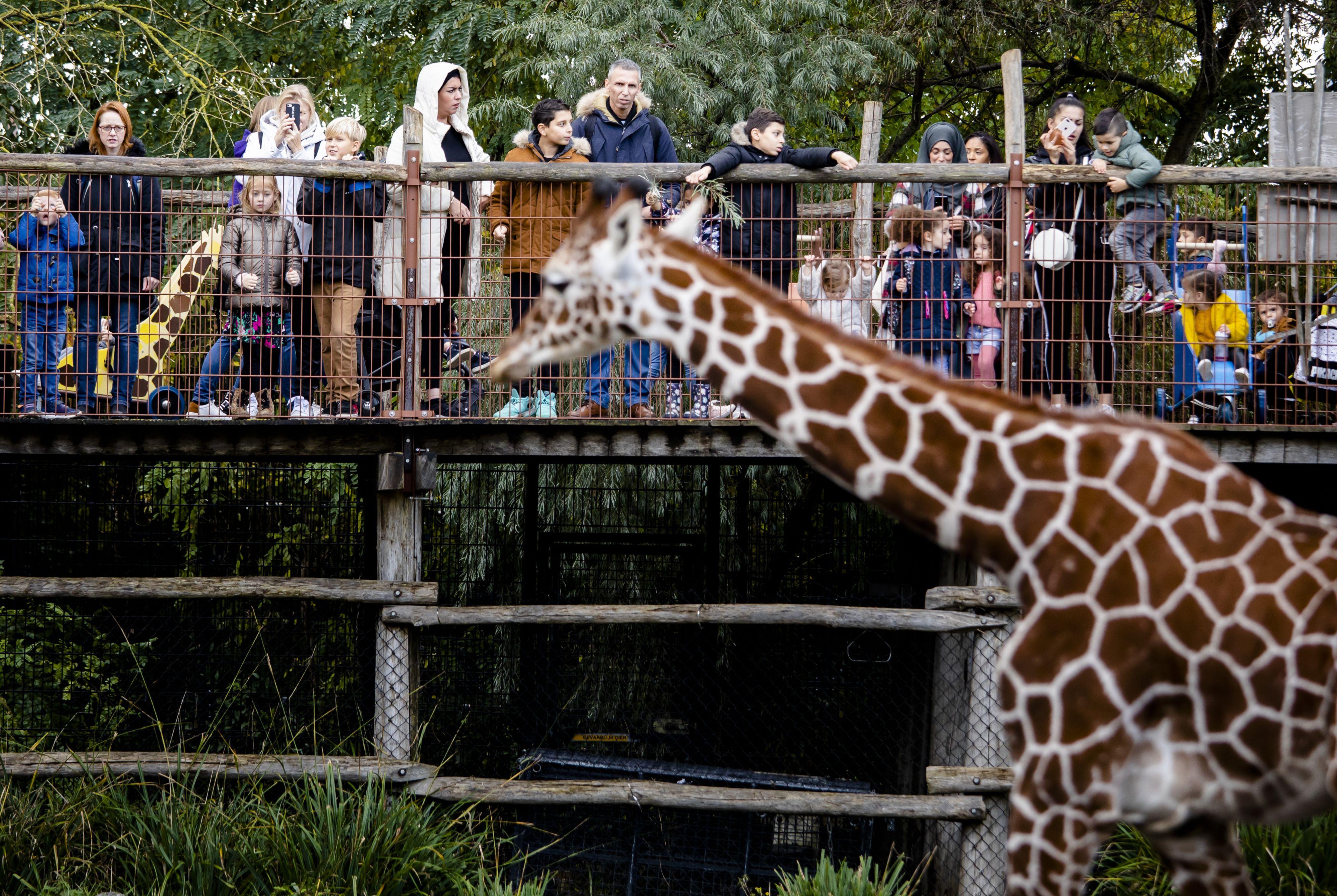 Overzicht: wanneer pretparken / dierentuinen open?