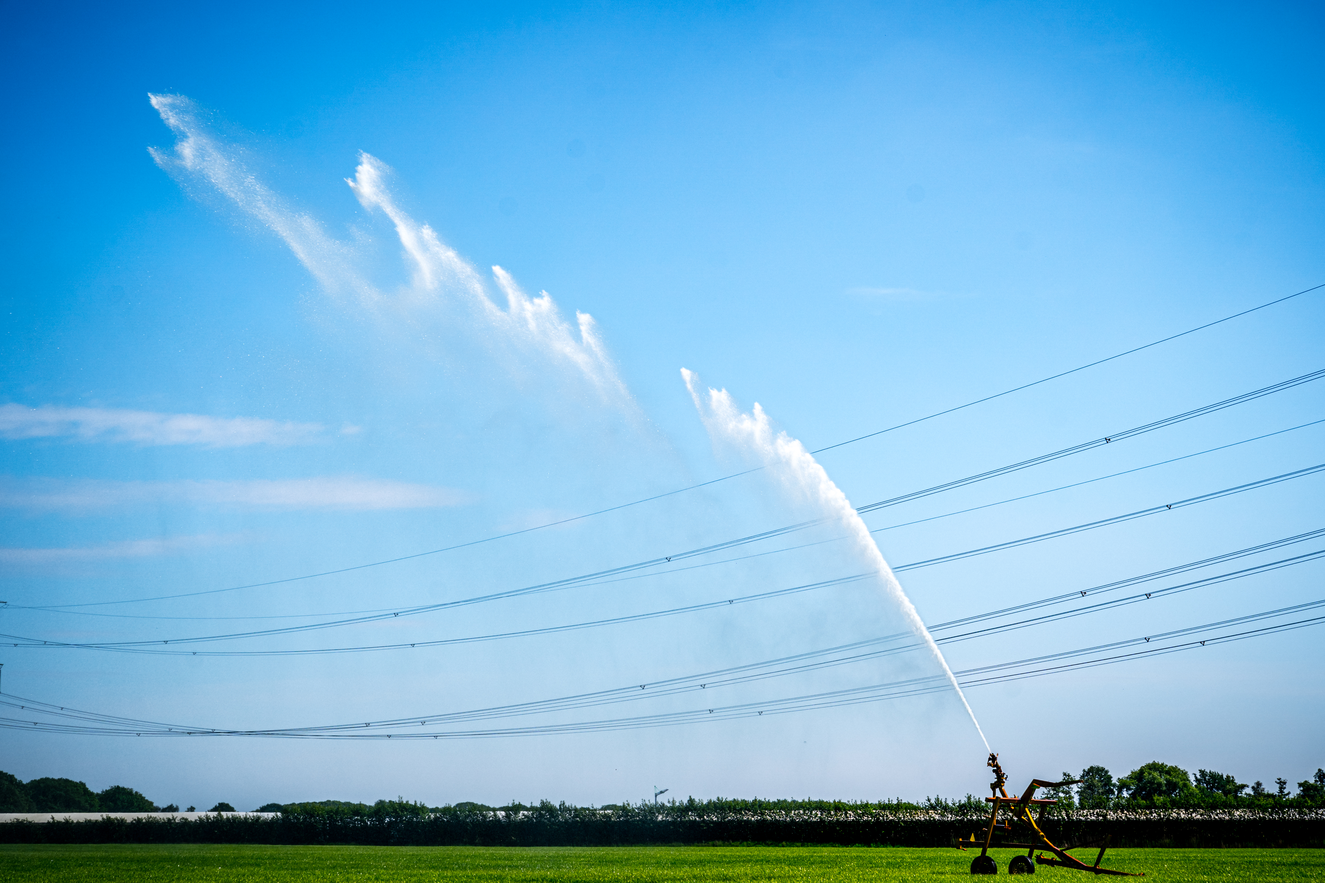 droogte Nederland