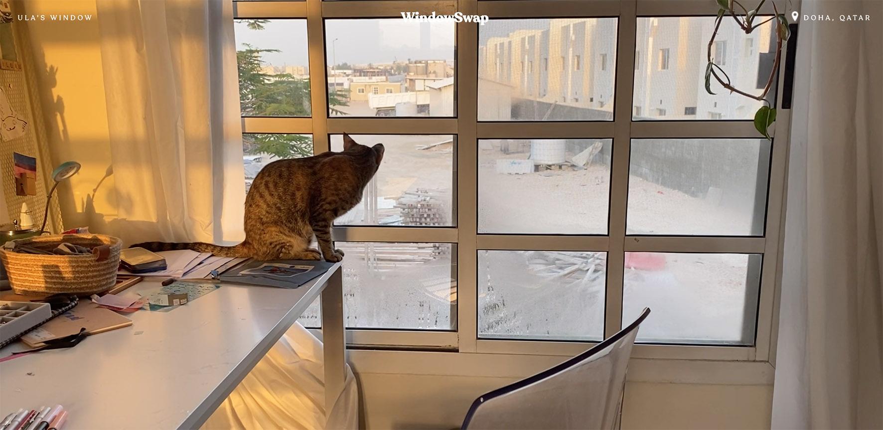 Op deze foto zie je een window in Qatar
