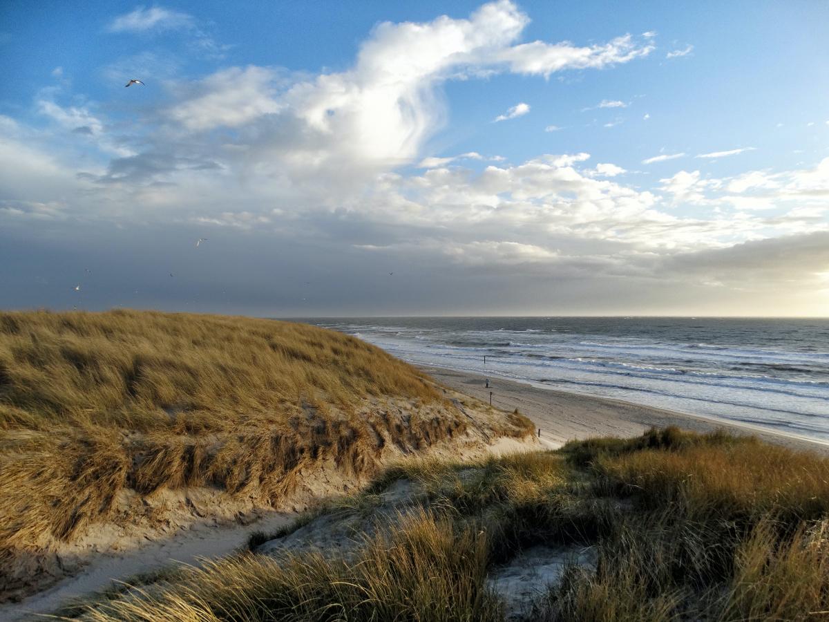 wandelen, hiken in holland, nationaal park duinen van texel, mooiste wandelroutes