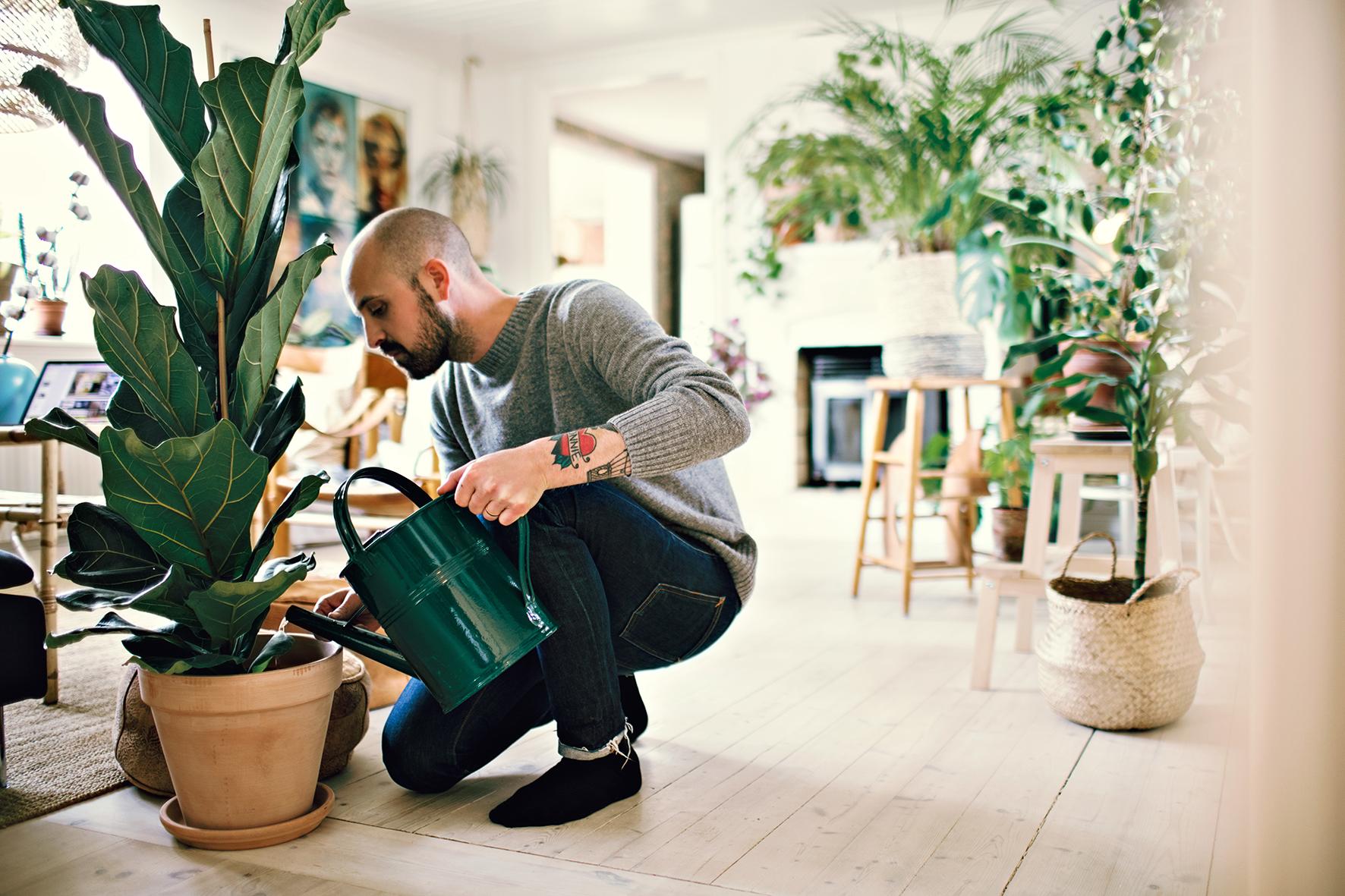 Op deze foto zie je een man een plant water geven