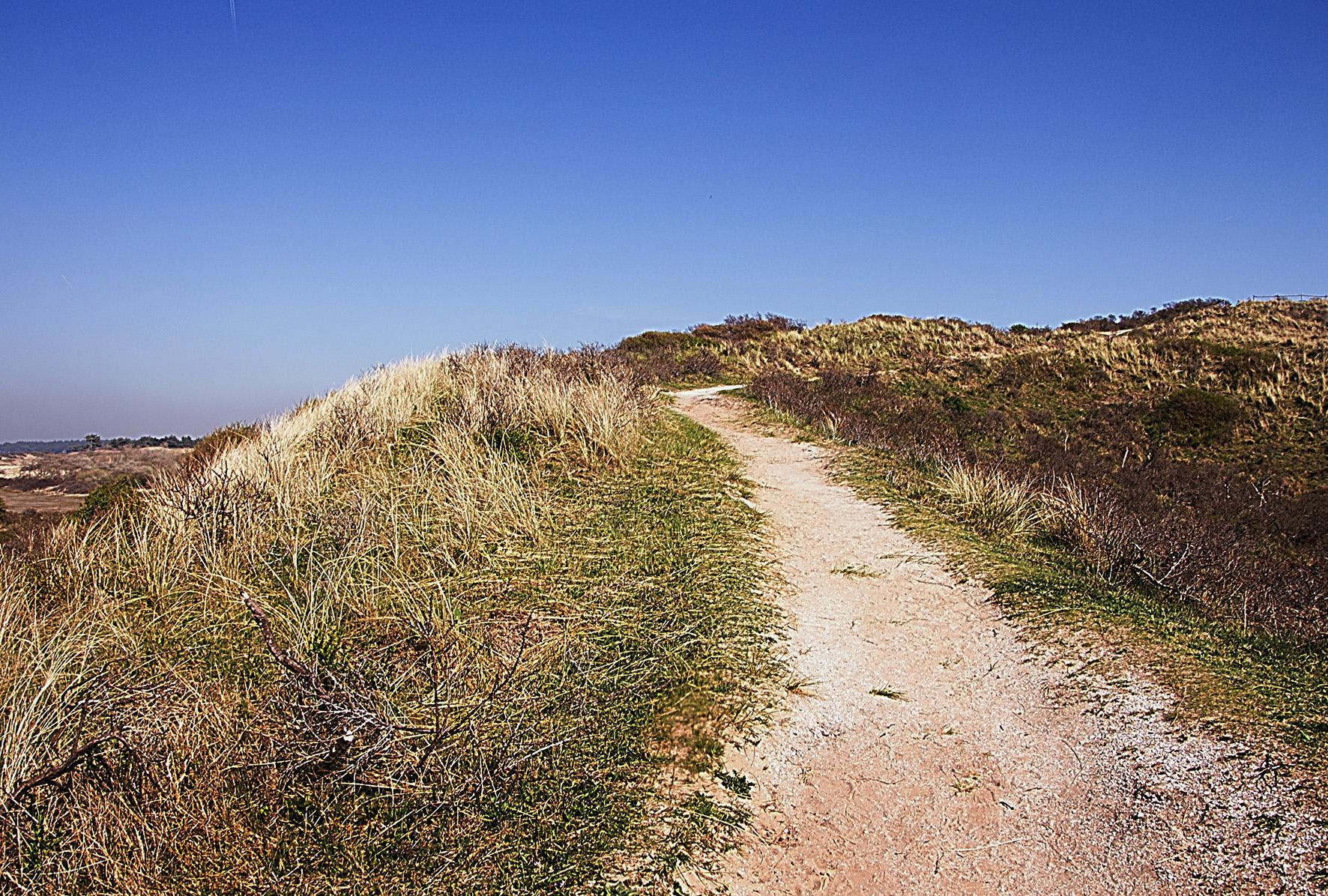 National Park Zuid Kennemerland