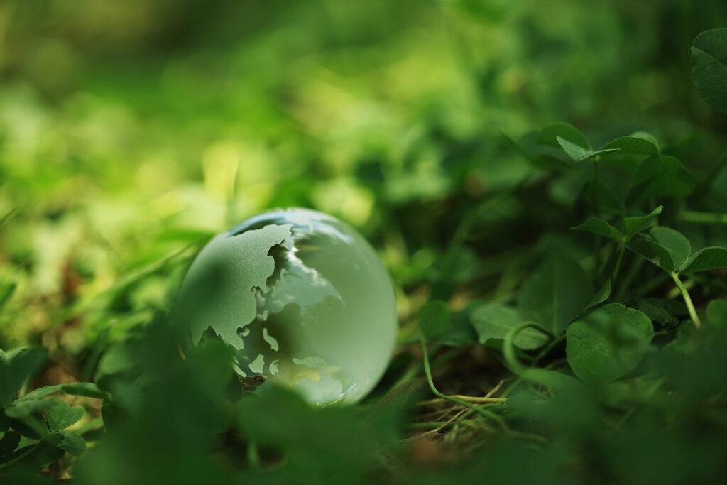 De aarde in het groen
