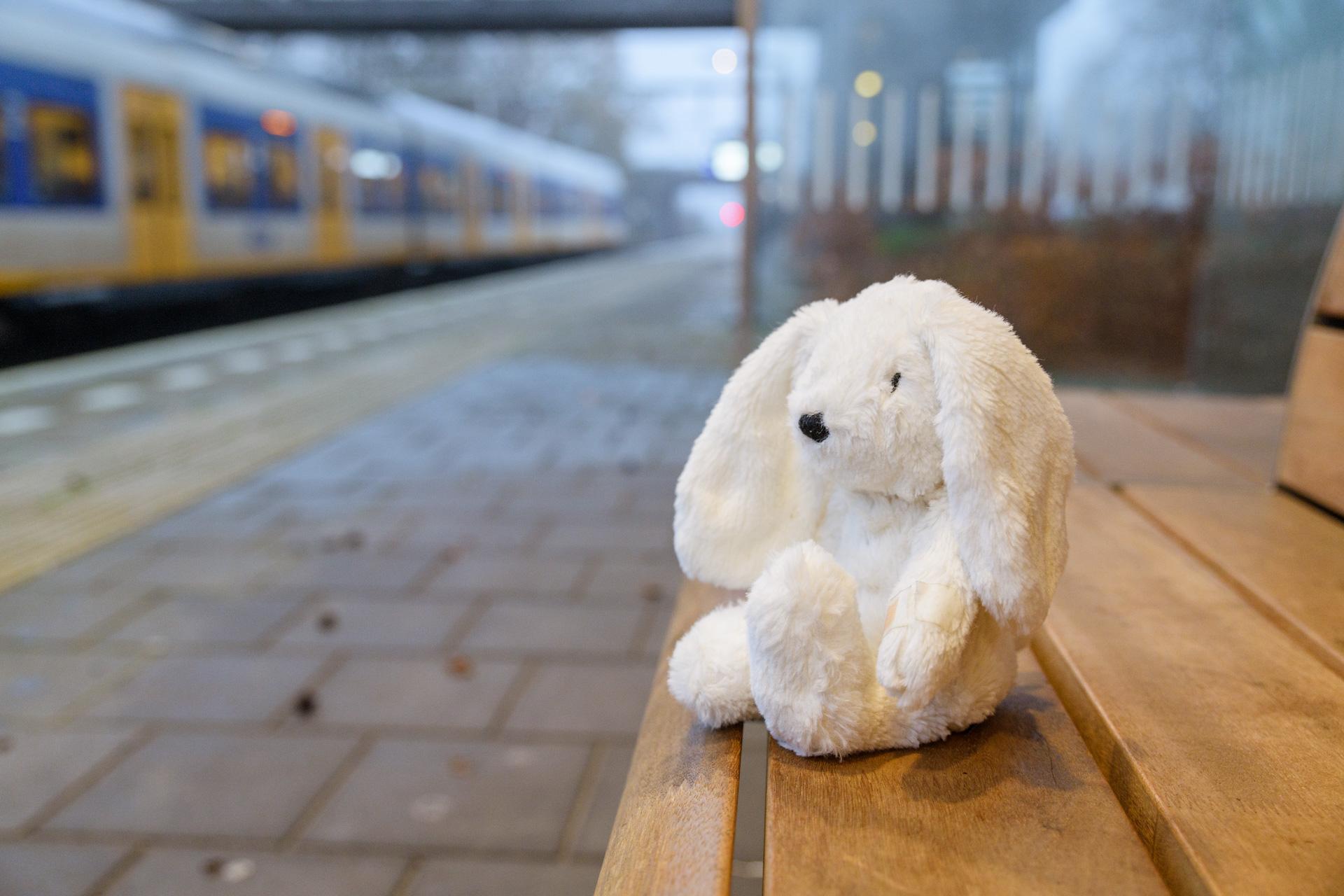 Week van de verloren knuffel: NS zoekt baasjes van verloren knuffels